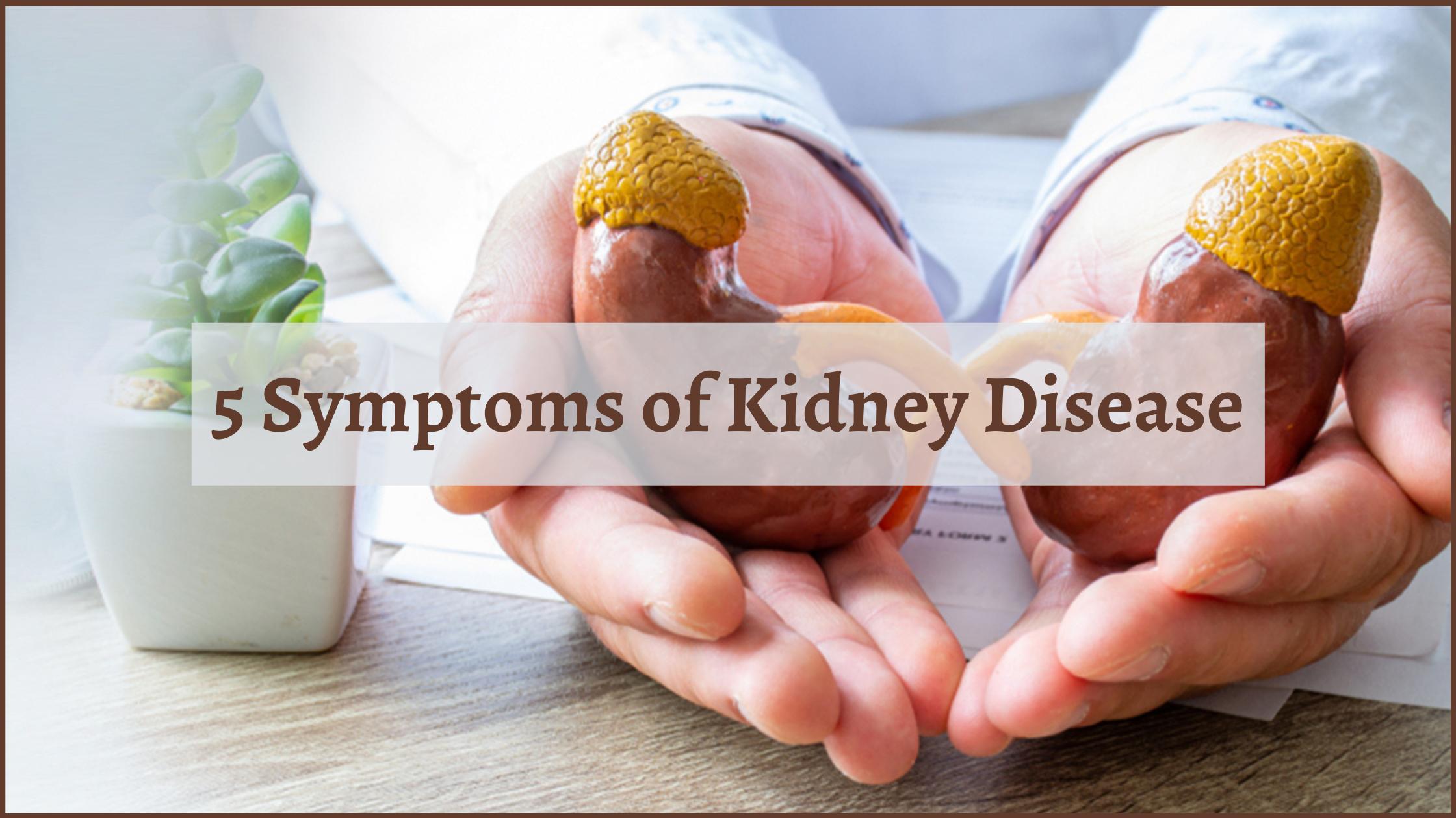symptoms of kidney disease